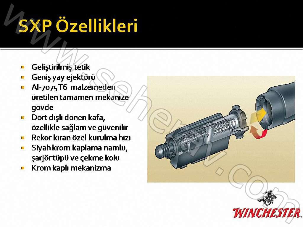 http://www.seherav.com/YuklenenResimler/39397829771041_Slayt10.jpg